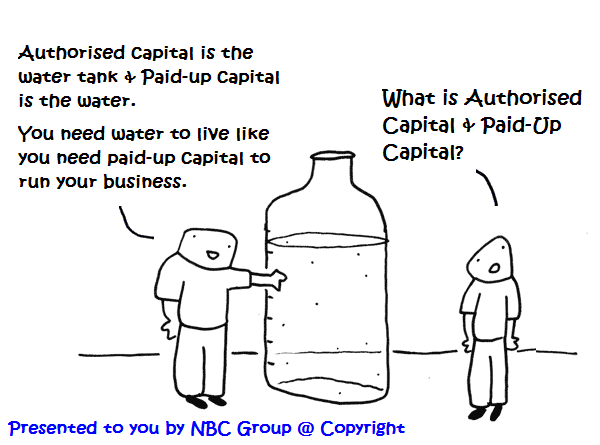Authorised capital & Paid up capital by NBC Group